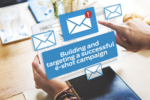 Building and targeting a successful e-shot campaign